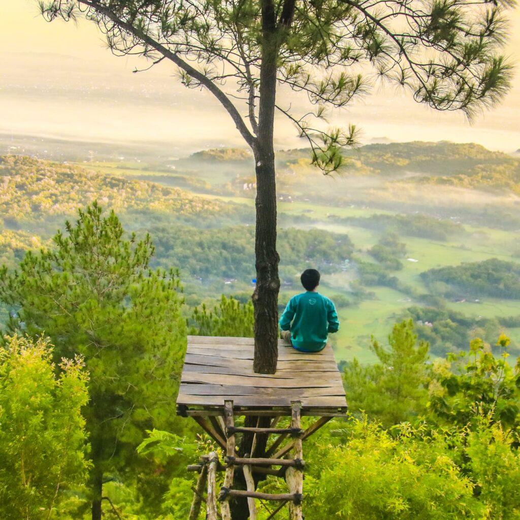 MAN SITTING ON A TREE